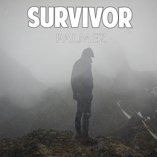 Survivor di Palmez