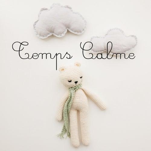 Temps Calme : Musique douce pour enfants et bébés von Various Artists
