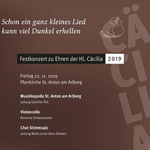 Festkonzert zu Ehren der Hl. Cäcilia 2019 de Musikkapelle St. Anton am Arlberg