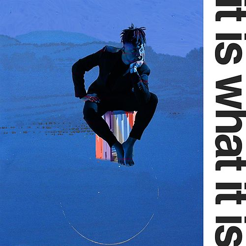 It Is What It Is (feat. mau) by Swami Sound