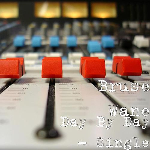 Day By Day - Single von Bruse Wane