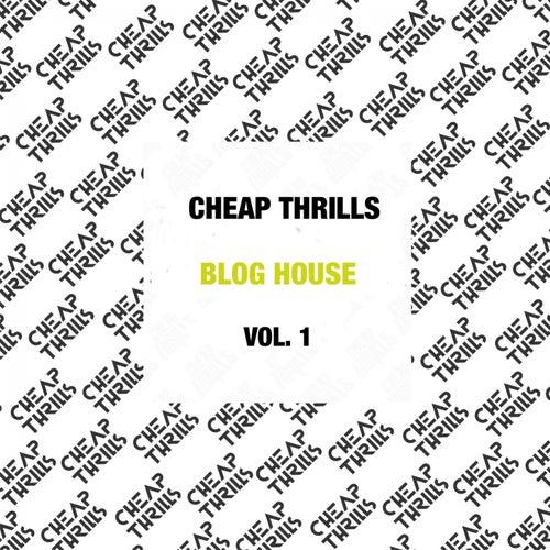 Blog House (Vol. 1) fra Hervé, Trevor Loveys, Voodoo Chilli, The Count of Monte Cristal, His Majesty Andre, Rico Tubbs, Gigi Barocco, Kill Frenzy, Detboi, Kill Light