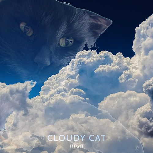 High by Cloudy Cat