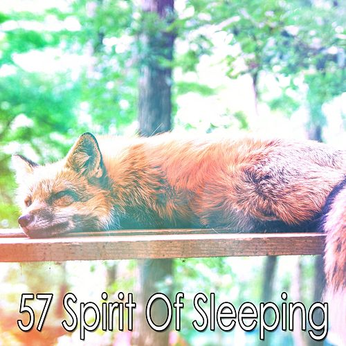 57 Spirit of Sleeping by S.P.A