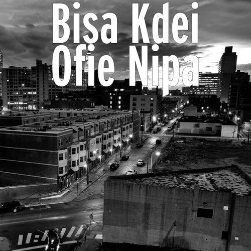Ofie Nipa by Bisa Kdei