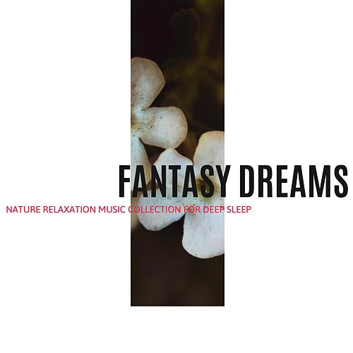 Fantasy Dreams - Nature Relaxation Music Collection for Deep Sleep von Massage Music