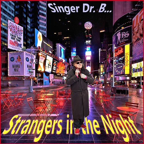 Strangers in the Night by Singer Dr. B...