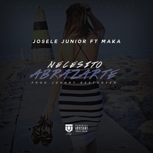 Necesito Abrazarte de Josele Junior