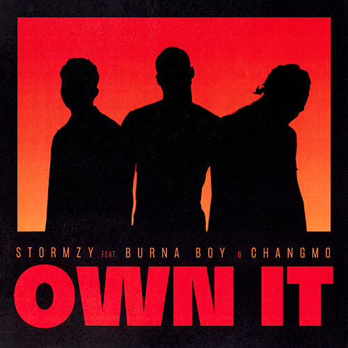 Own It (feat. Burna Boy & CHANGMO) by Stormzy