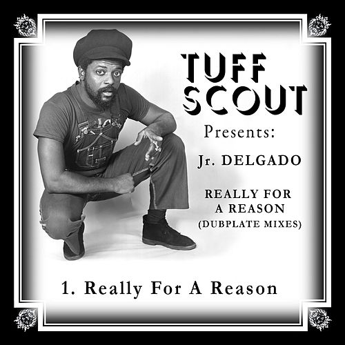 Really for a Reason (Dubplate Mixes) by Various Artists
