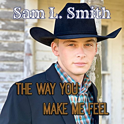 The Way You Make Me Feel by Sam L. Smith