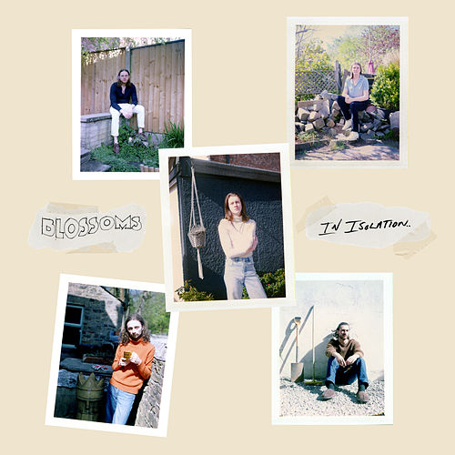 There's A Reason Why (I Never Returned Your Calls) (In Isolation) by Blossoms