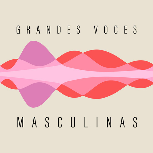 Grandes Voces Masculinas by Various Artists
