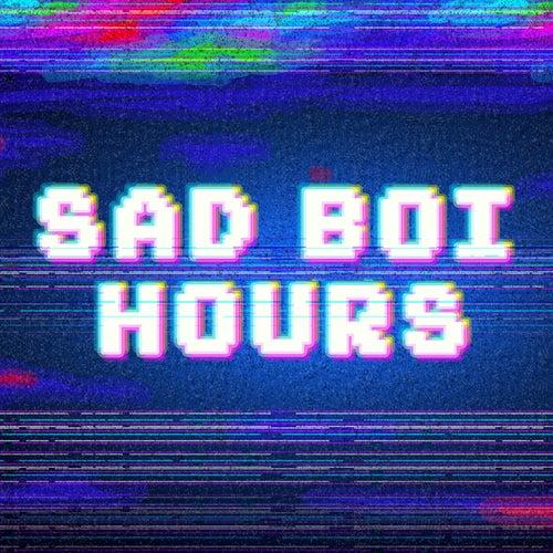 Sad Boi Hours de Various Artists