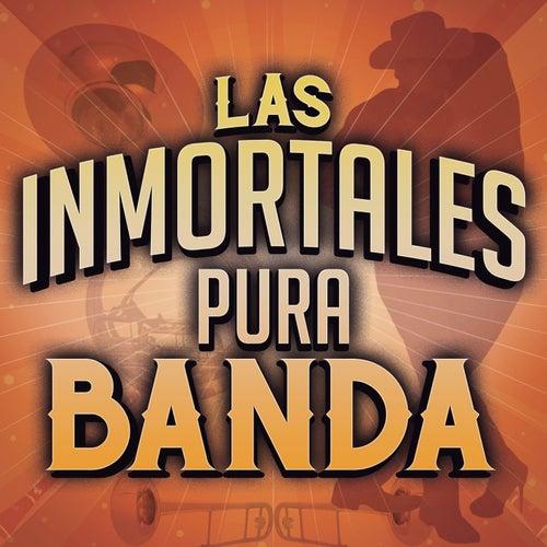 Las Inmortales Pura Banda de Various Artists