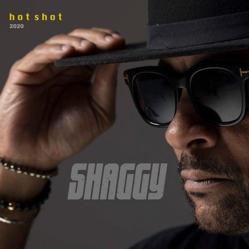Angel (Hot Shot 2020) de Shaggy