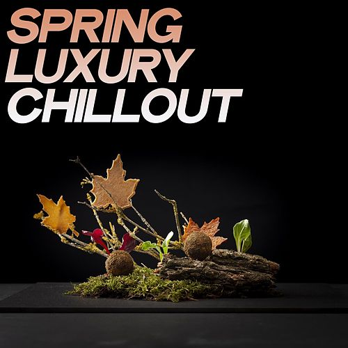Spring Luxury Chillout (Luxury & Sensual Chillout Music Spring 2020) von Various Artists