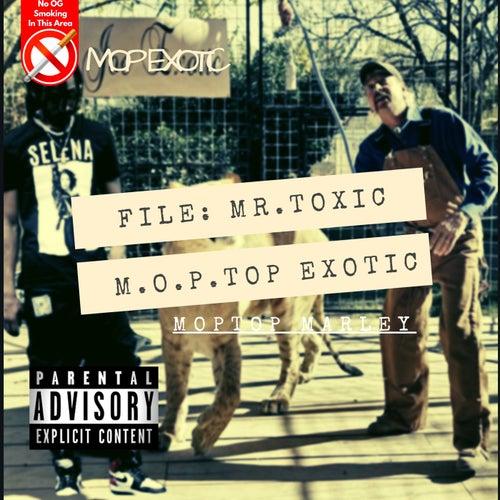 Mop Exotic Mr Toxic von Big MopTop Marley