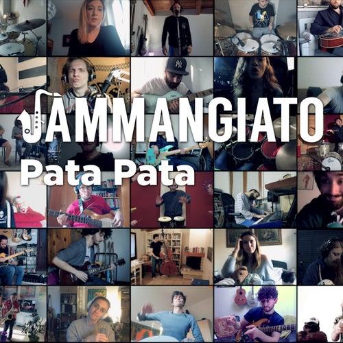 Pata pata by Jammangiato