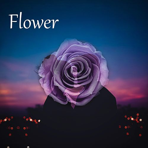 Flower by David Cook