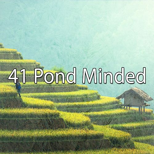 41 Pond Minded von Massage Therapy Music