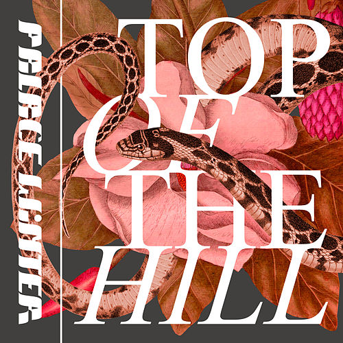 Top of the Hill by Palace Winter