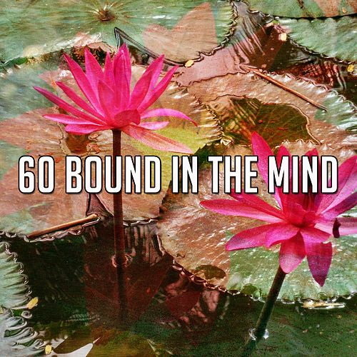 60 Bound in the Mind by Classical Study Music (1)