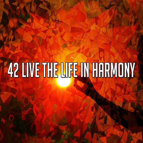 42 Live the Life In Harmony von Lullabies for Deep Meditation