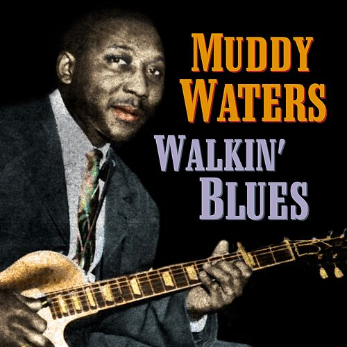 Walkin' Blues de Muddy Waters