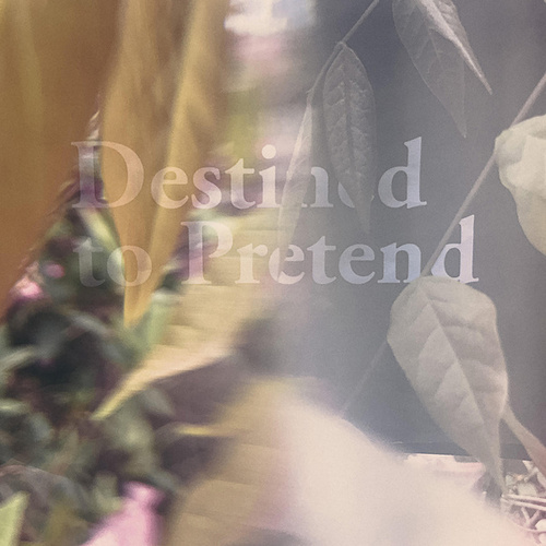 Destined to Pretend de Beta Radio