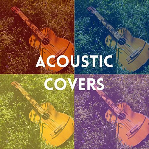 Acoustic Covers von Various Artists