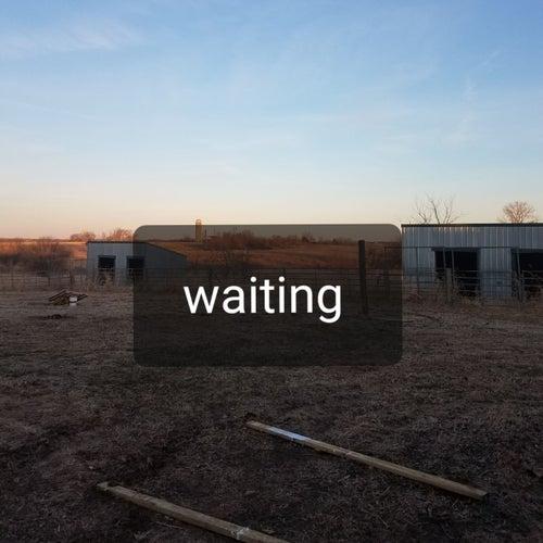 Waiting de Joe Jackson