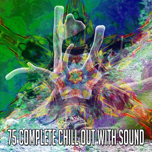 75 Complete Chill out with Sound by Baby Sleep Sleep