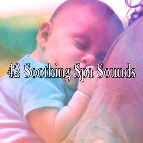 42 Soothing Spa Sounds de Sleepicious