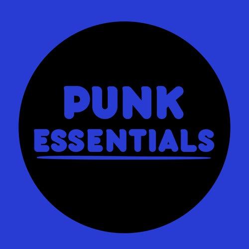 Punk Essentials von Various Artists