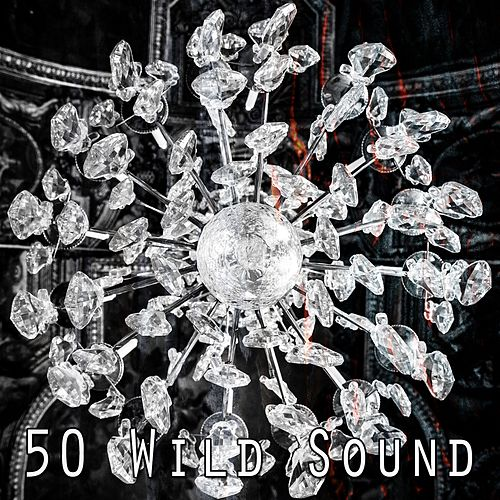 50 Wild Sound de White Noise Babies
