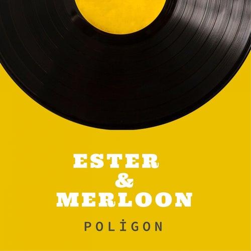 Poligon by Ester