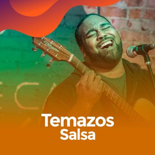 Temazos salsa de Various Artists