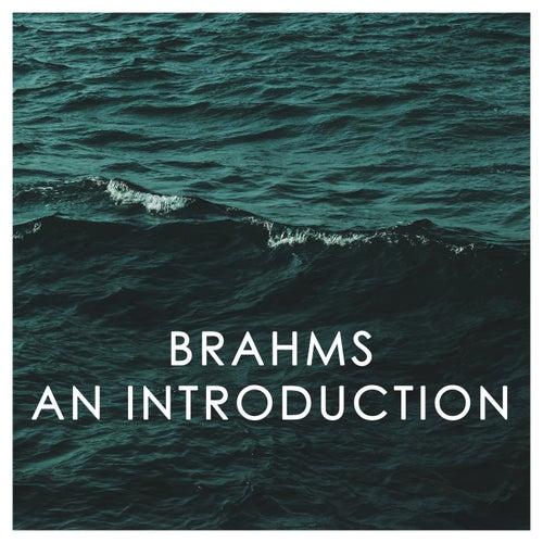 Brahms: An Introduction von 新山恵理