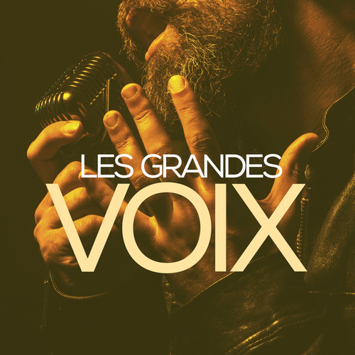 Les grandes voix de Various Artists