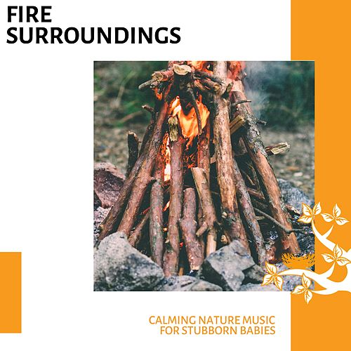 Fire Surroundings - Calming Nature Music for Stubborn Babies von Various