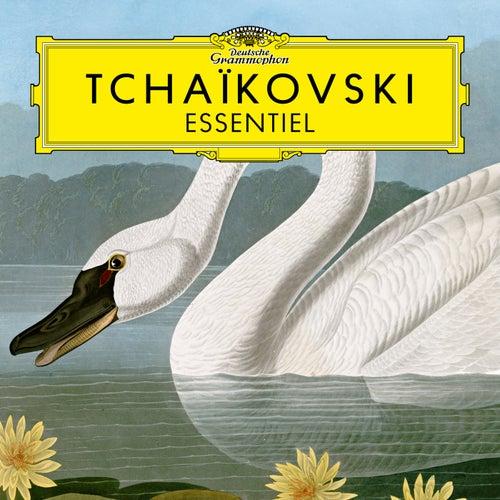 Tchaïkovski: Essentiel de Peter Tchaikovsky