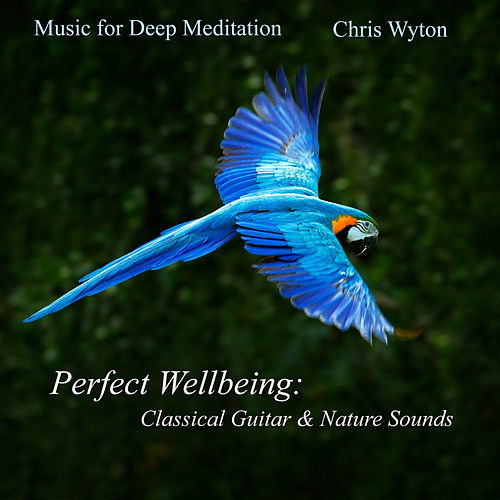 Perfect Wellbeing: Classical Guitar & Nature Sounds by Music For Meditation