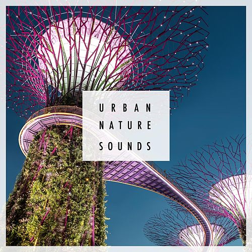 Urban Nature Sounds by Nature Sounds (1)