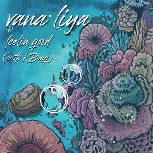 Feelin' Good by Vana Liya