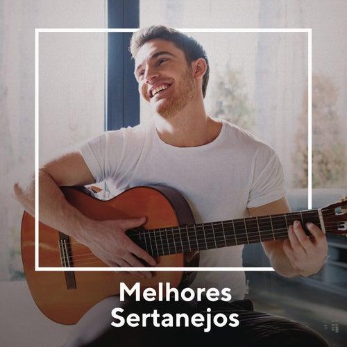 Melhores Sertanejos de Various Artists