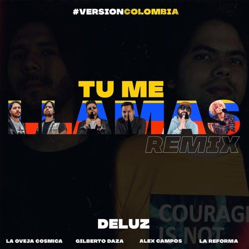 Tu Me Llamas (Remix) de Deluz