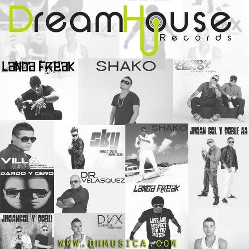 Dream House Records, Vol 1. de Various Artists