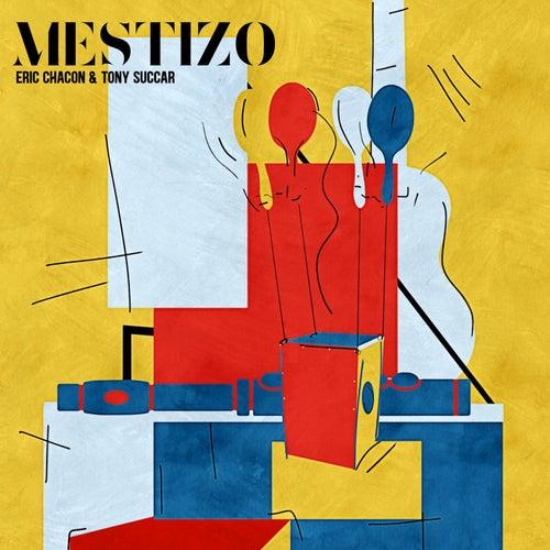 Mestizo by Tony Succar