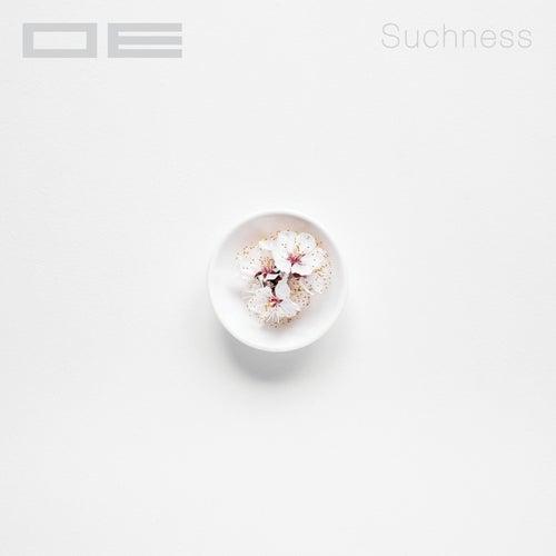 Suchness by O-E
